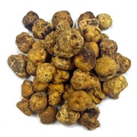 "Tuber Borchii (""Bianchetto or Whittish Truffle"")"